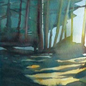 Forest 1, 20x45 cm, France 2012